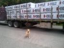 Maggie-- Quality control supervisor